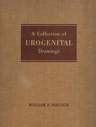 Collection of Urogenital Drawings; Anatomy, Anomalies, Gross Pathology: 1915-1952. William P. Didusch.