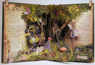 How to Find Flower Fairies; Discover an Enchanted Fairy World
